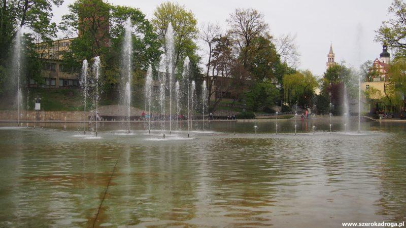 Opole - Stawek Barlickiego