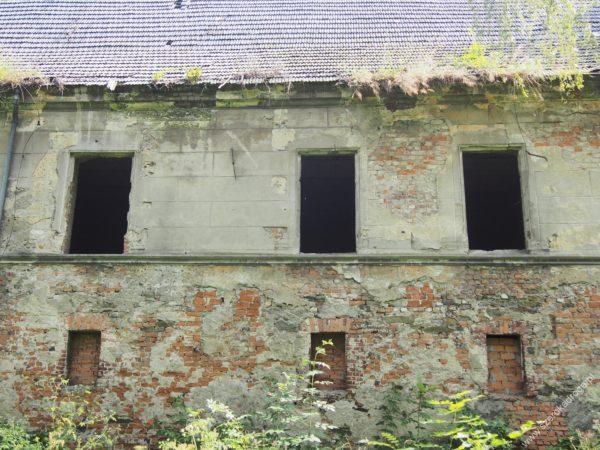 ruiny zamku Łąka Prudnicka