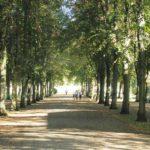 park Sanssouci w Poczdamie