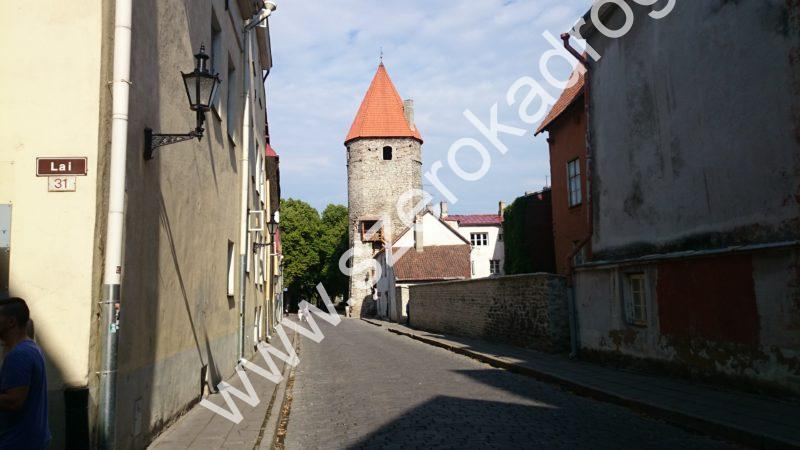 zwiedzanie Tallinna