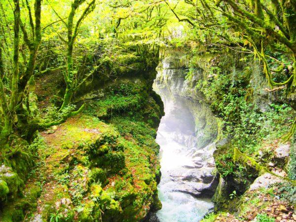 Kanion Gachedili w Gruzji