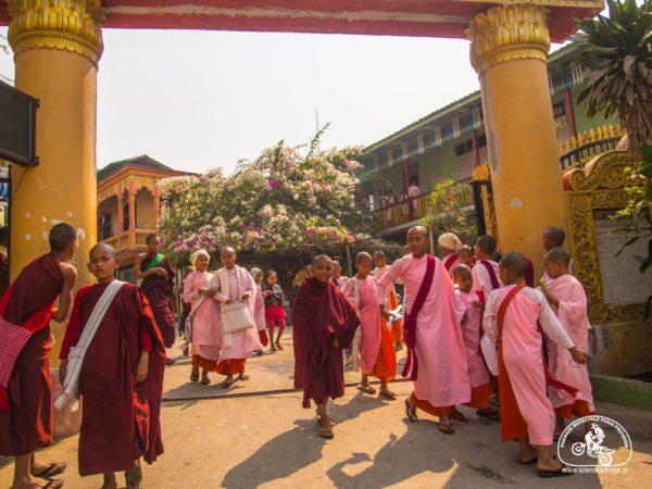 Aung Myae Oo, edukacja w Birmie