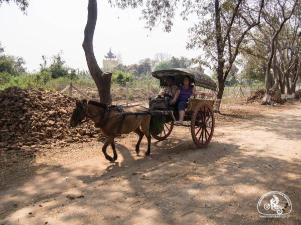 Inwa transport, Birma/Myanmar