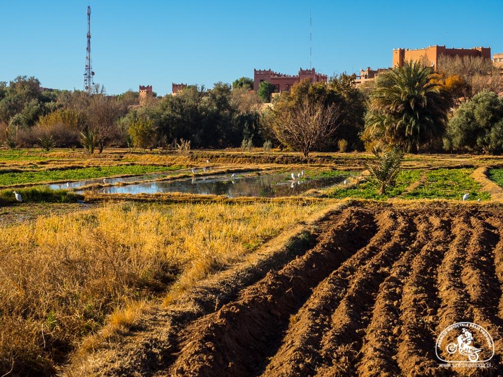 Maroko atrakcje