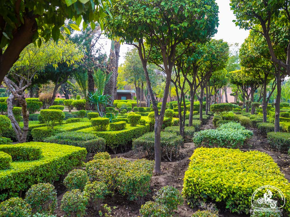 ogrody i parki Marrakeszu